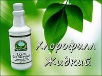 БАД «Хлорофилл жидкий»